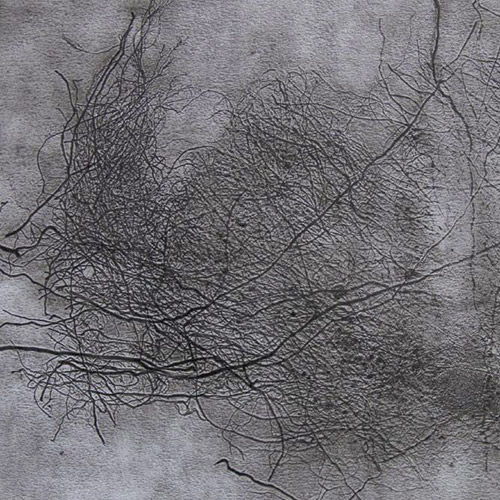 Kořeny (Roots)